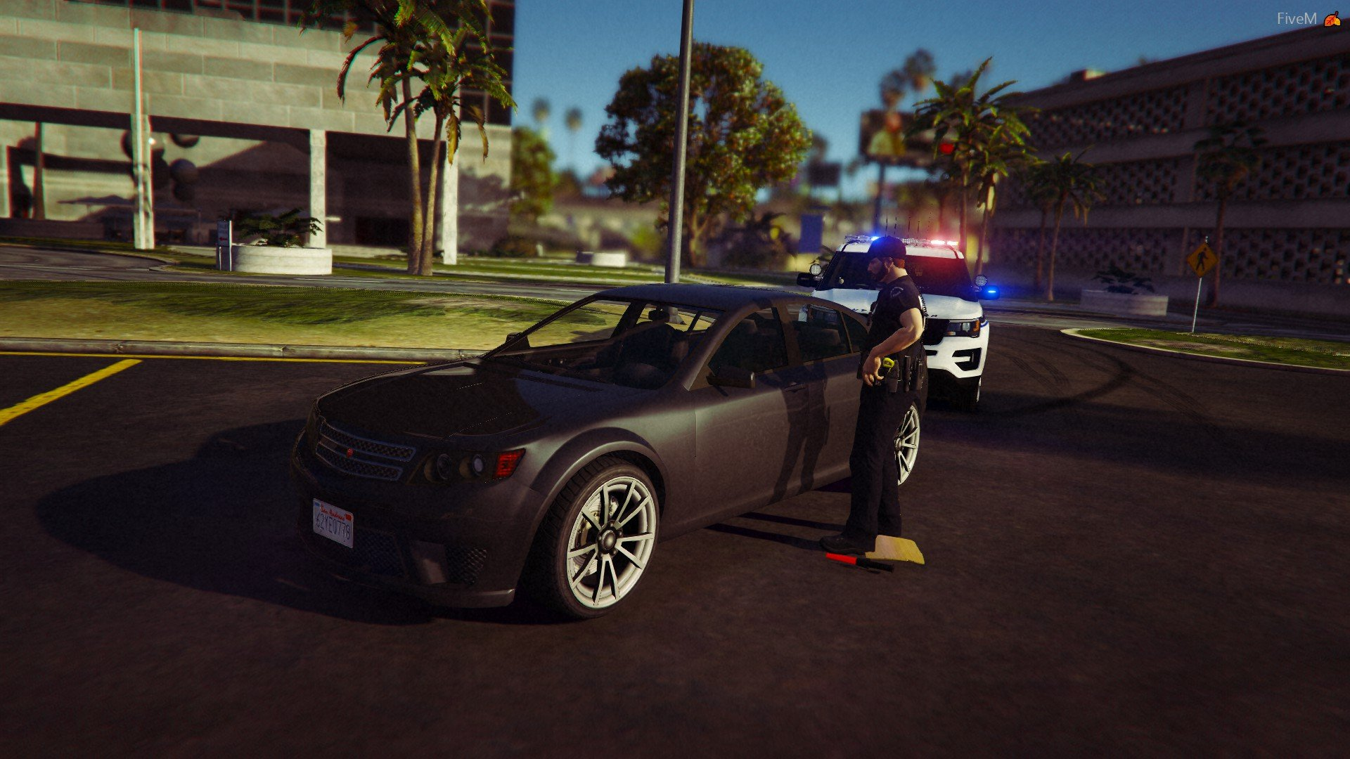 Staged traffic stop in SADPS's server.