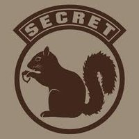 Super Secret Squirrel Stuff