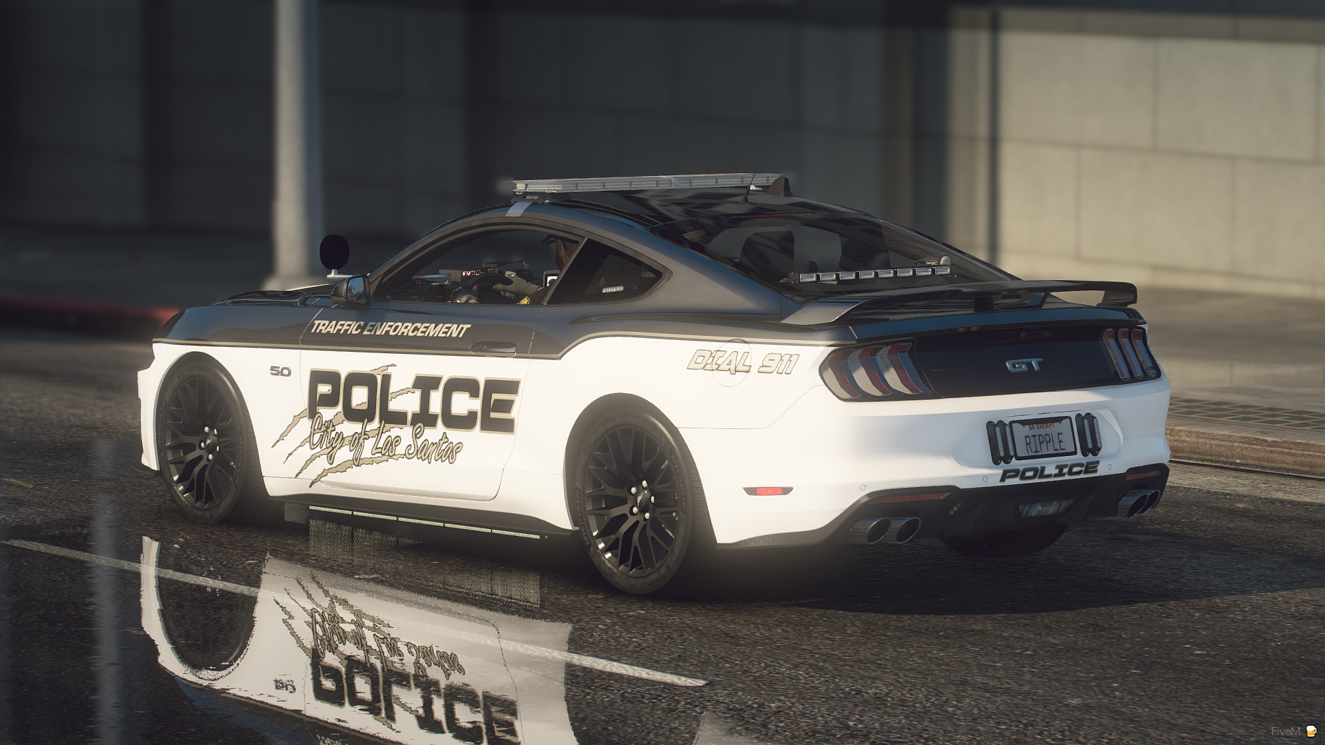 2019 Ford Mustang Traffic Enforcement Unit