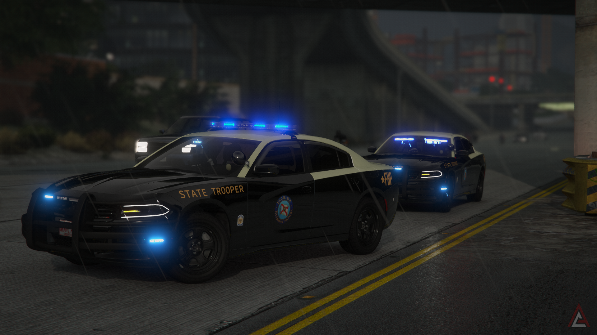   Florida state trooper '18 chargers  